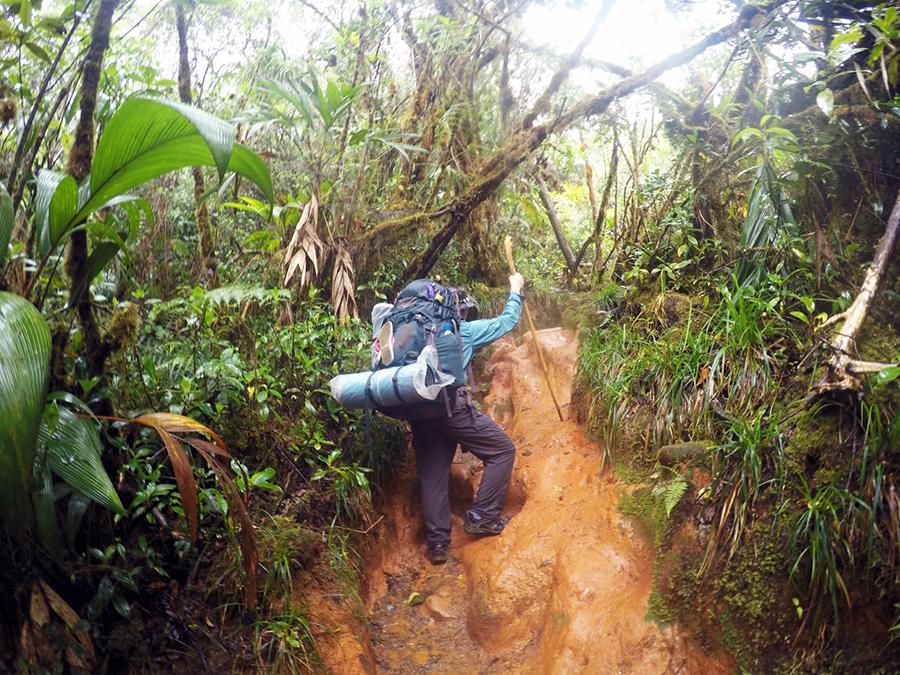 Travel Insurance Story by Will www.taylorstracks.com
