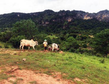 Myanmar Countryside www.taylorstracks.com