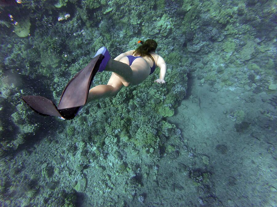 Snorkel-Koh-Tao