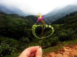 Gift in Sapa Vietnam www.taylorstracks.com
