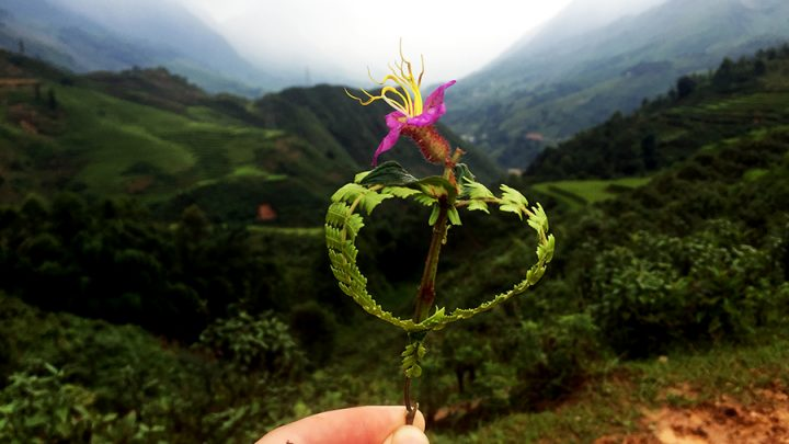 Trekking in Sapa: The Good, the Bad and Landslides in Vietnam