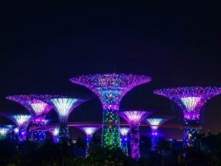 Singapore travel | Singapore itinerary | Singapore travel places | Singapore tips | Things to do in Singapore | Gardens by the Bay Singapore