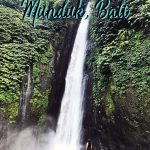 There is so much to know about Bali travel as there are many destinations. But this list of the best things to do in Munduk will help you plan the perfect Munduk itinerary as a part of your dream Bali itinerary. This Munduk travel guide will make sure you have the best time. Click to start planning your Munduk trip!