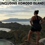Find the best things to do in Flores Indonesia with this ultimate Flores travel guide that will tell you where to stay in Flores, give you Flores travel tips and more with stops at Komodo National Park, Padar Island, Kelimutu crater lakes! Click to start planning!