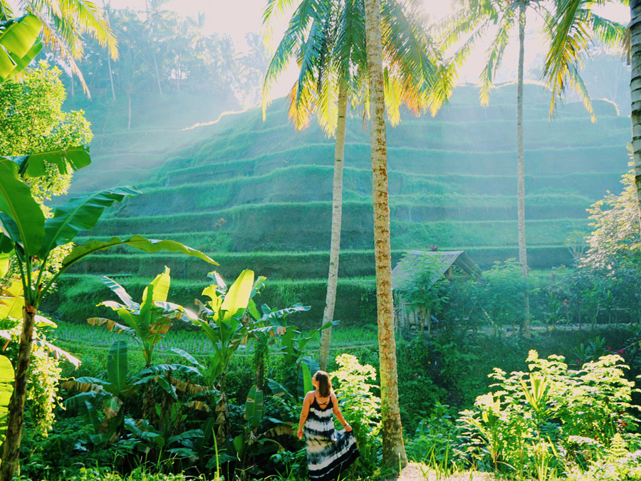 Bali itinerary | Bali tour itinerary | Bali trip itinerary | Bali itinerary 2 weeks | 2 weeks in Bali