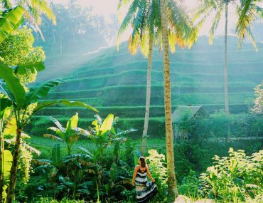 Things to do in Ubud | What to do in Ubud | Top things to do in Ubud | Best things to do in Ubud | Ubud attractions | Ubud sightseeing | Places to visit in Ubud | Tours from Ubud | Best of Ubud | Places to see in Ubud | Where to go in Ubud