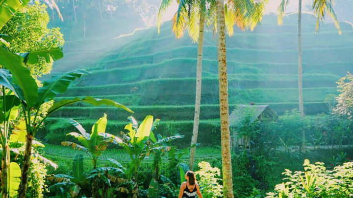 29 Incredible Things to do in Ubud, Bali
