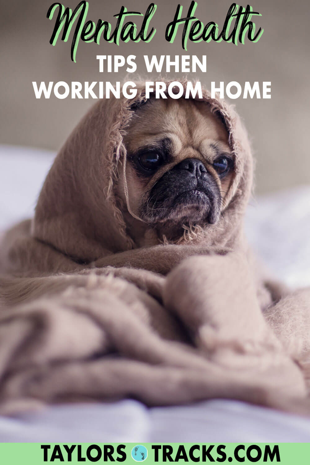 Get working from home tips that are actually useful but also super simple to help you keep your sanity while also being productive. These top work from home tips focus on your mental health just as much as they do your efficiency. Click to find out what they are!