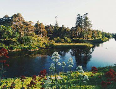 Best Yoga Retreats in Ireland