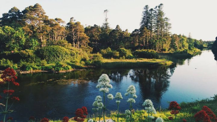 10 Best Yoga Retreats in Ireland