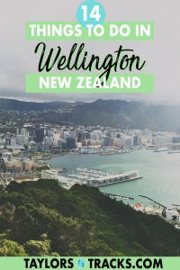 Make your trip to Wellington, New Zealand unforgettable. From the top Wellington activities to the must-see Wellington attractions, this Wellington travel guide covers it all, including the best day trips, for all types of travellers. Click to find the best things to do in Wellington!