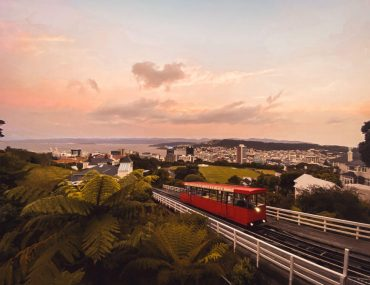 Things to do in Wellington New Zealand