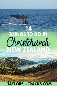 Plan the ultimate trip to Christchurch with these things to do in Christchurch that you're going to want to consider adding to your New Zealand itinerary! From the best Christchurch sightseeing spots, activities and adventures to scenic Christchurch day trips, this guide has got you covered. Click to find out what to do in Christchurch!