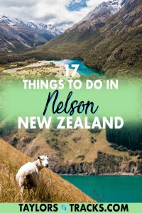 Nelson, New Zealand is worthy of a stop on any New Zealand itinerary for its scenic views, hiking, local drinks including wine, beer and cider, the national parks and its art scene! From the top Nelson activities and attractions for adventurers and tourists, this Nelson travel guide has got you covered. Click to find the best things to do in Nelson!