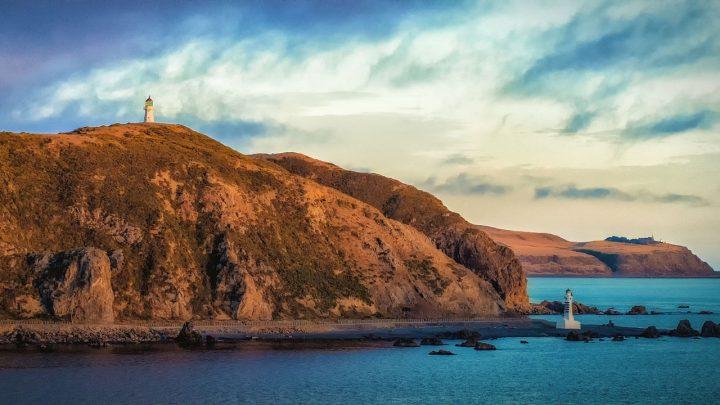 Wellington Itinerary: 1-2 Days in Wellington