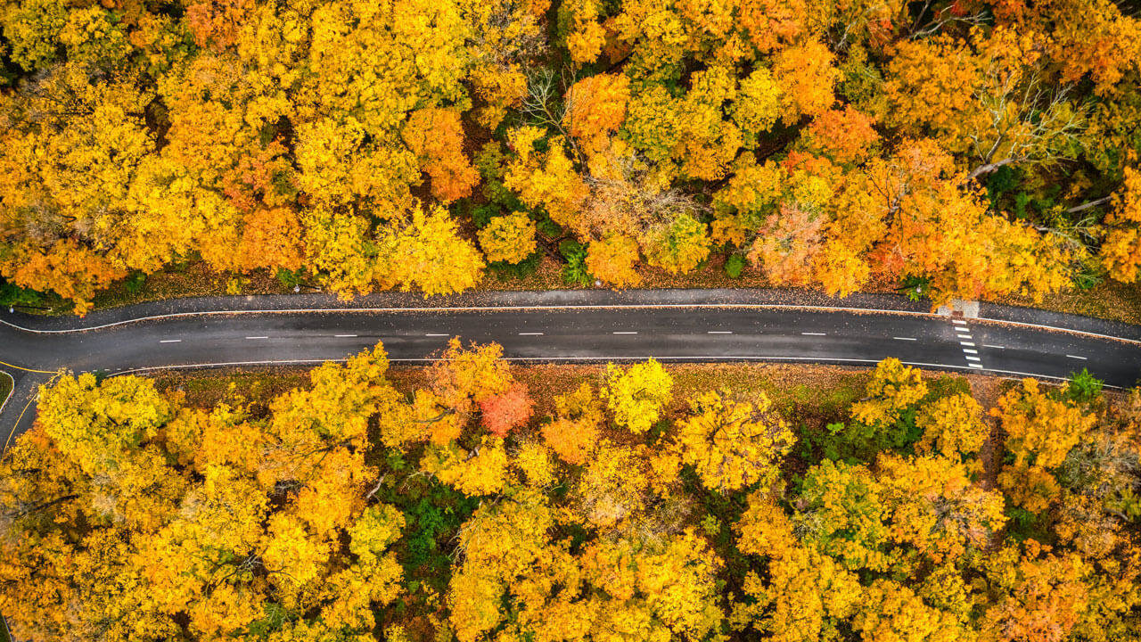 USA in the Fall: 13 Best Fall Vacations for Fall Foliage